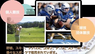 マウスガード採用スポーツ2